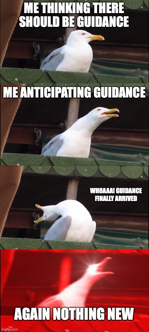 Class I guidance gull